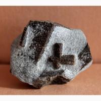 Ставролит, двойниковый кристалл в слюдистом сланце 2