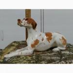 Фарфоровая статуэтка собака Поинтер, Дог, редкий окрас, ЛФЗ, состояние Люкс