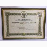 Похвальный лист 1903 г Самара (в рамке)