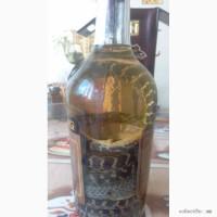 Настойка китайская со змеей