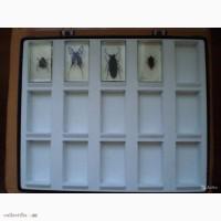 Продам коллекцию журнала насекомые и их знакомые 60 шт