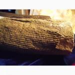 Продам окаменелости древних растений