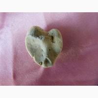 Уникальный камень-окаменелость