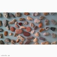 Продам морские камушки