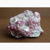 Кристаллы розового турмалина в лепидолите