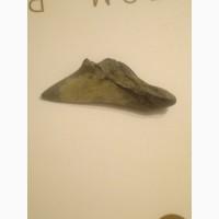 Продам зуб древней акулы