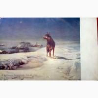 Редкая открытка. Зимняя ночь1928 год